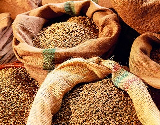 У світі через несприятливу погоду зростають ціни майже на всі зернові