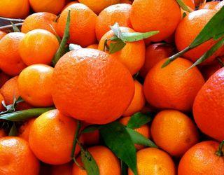 Український T.B. Fruit запустить у Грузії виробництво з переробки мандаринів