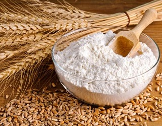 Grain Alliance відкриє на Київщині борошномельний комплекс