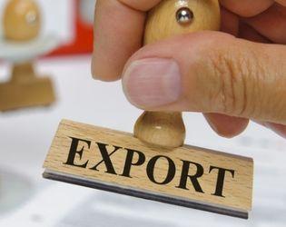 У І кварталі аграрний експорт України склав 38% від загального