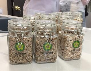 На Чернігівщині відкрили найсучасніший у Європі завод з виробництва пластівців