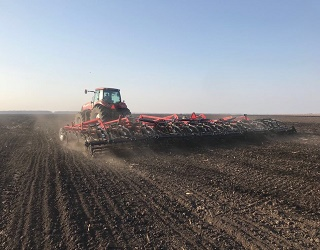 Ярими зерновими засіяно 93% запланованих площ
