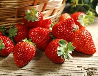 Особливості вирощування ремонтантних полуниць