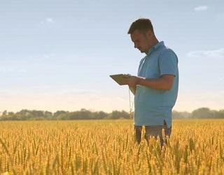 Agricom Group активно впроваджує точне землеробство