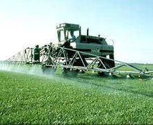 Ринок фальсифікату засобів захисту рослин в Україні становить 20-30%