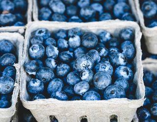 Вітчизняним виробникам лохини нині вигідніше продавати ягоду в Україні, ніж експортувати
