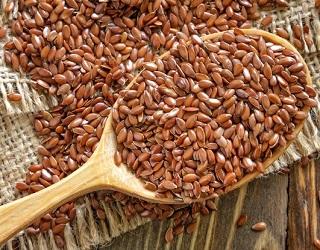 Україна має великі перспективи експорту харчового льону