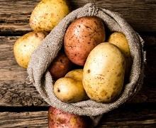 За середнього рівня забур'яненості урожайність картоплі падає на 25%