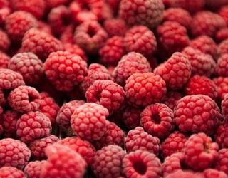 Цього року T.B. Fruit планує переробити в Україні 10% світового ринку малини
