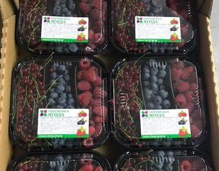 «Українська ягода» почала випускати ягідні мікси