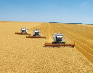 Зібрано 20 млн тонн зерна нового врожаю
