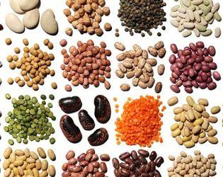 Рентабельність майже всіх видів продукції рослинництва торік впала