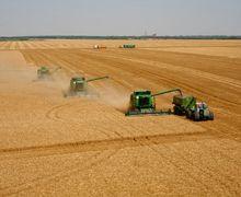 Зібрано майже 31 млн тонн зерна нового врожаю