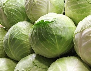 Житомирське господарство «Двірець» збирає з гектара понад 100 тонн капусти