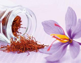 З 200 квіток шафрану отримують лише 1 грам спеції