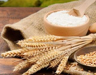 Експортні ціни на пшеничне борошно зросли на 20%