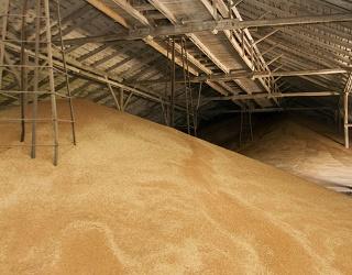 «Прометей» збільшив приймання зернових і олійних на 30%