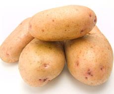 Через крапчасту мозаїку врожай картоплі падає на 25%