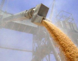 З початку сезону Україна експортувала 7 млн тонн зерна
