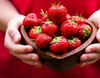 Агрофірма «Весна-2011» почала вирощувати ремонтантні полуниці