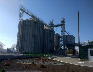 HarvEast відкрив на Донеччині насіннєвий завод вартістю $5 млн