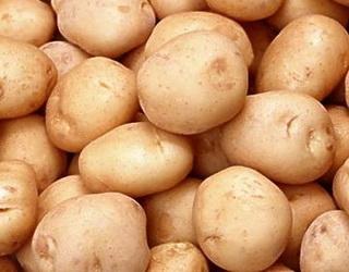 Урожайність картоплі у професійних господарств у 1,5 раза вище, ніж у населення