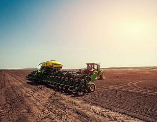 Озимими зерновими засіяно 95% запланованих площ