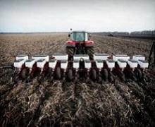 Сільгоспкультури по-різному реагують на спосіб обробітку ґрунту