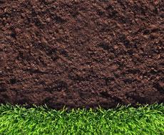 Органічні добрива покращують здатність ґрунту засвоювати вологу