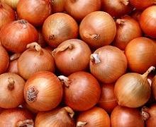 Вирощена з розсади цибуля погано зберігається