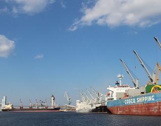 Українські морпорти зменшили відвантаження зернових на 35%