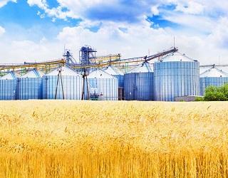 Китайці хочуть інвестувати в елеватори і переробні підприємства в Україні