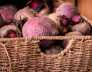 Зрошення підвищує врожайність столових буряків у 1,5-2 раза
