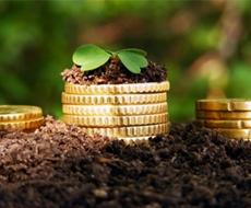 ТОП-3 областей, які залучили найбільше фінансування за аграрними розписками у 2018 році