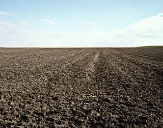 Аграріям не слід зволікати з сівбою ярих культур, – Укргідрометцентр