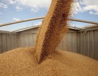 З початку сезону Україна експортувала 34,3 млн тонн зерна