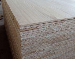 З 1 га павловнії можна отримати 400-500 куб. м деревини