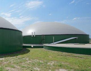 Інвестиційно привабливими для птахофабрик є проекти біогазових станцій від 1 МВт