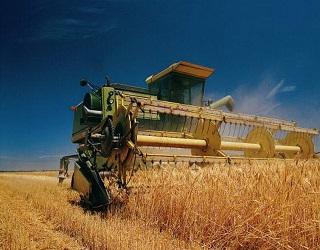 В Україні зібрано 129 тис. тонн зерна нового врожаю