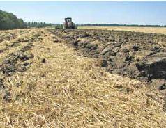 Правила роботи з ґрунтом