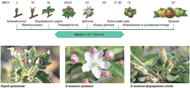 Малахіт — кристалічна формуляція для захисту вашого саду   (р)