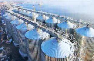 Шторми й тихі гавані зернового ринку
