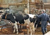 10 правил керування фермою