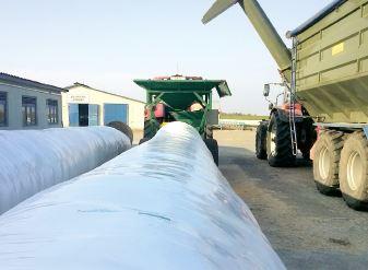 Як зберегти вологе зерно