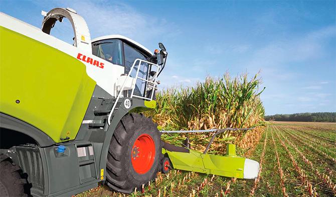 Високоякісний кукурудзяний силос — досвід майстра