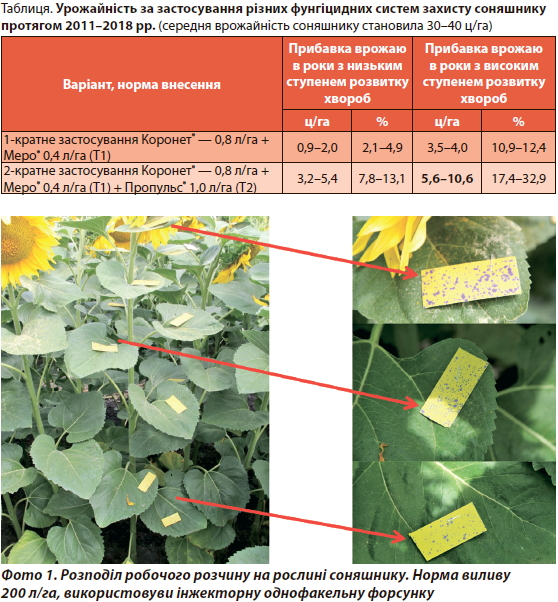 Захист соняшнику від шкідників і хвороб
