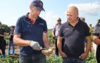 Демополе «Картопляна майстерня» компаній «Агріко Україна» та «Сингента», липень 2019
