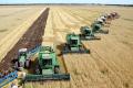 Як змінився топ-10 найбільших агрохолдингів за розмірами земельного банку
