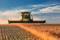 Обсяги сільгоспвиробництва на Луганщині за рік зросли на 9%