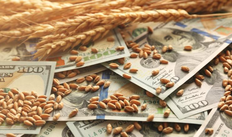 З початку року в Україні оформлено аграрних розписок вартістю понад $320 млн